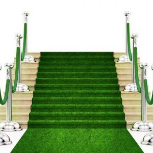 Grass Carpet -event & wedding decor rental montreal | home staging decor rental